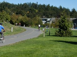 cyclists on separated path